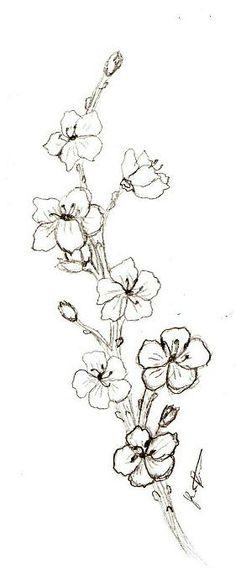 cherry_blossom_by_shadoweddream7.jpg (281×680)
