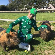 Robert Downey Jr. petting a couple of pigs
