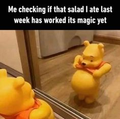 Holistic Approach To Health, Weight Loss Humor, Relatable Meme, Funny Memes, Jokes, Funny Quotes, Food Intolerance, Morning Humor, Low Sugar