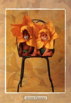 anne geddes essay My goal to write an essay on why i like a different artist's body of work all year is   where i gave the benefit of the doubt to anne geddes, where i see-sawed on.