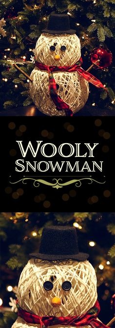 Wooly Snowman Craft