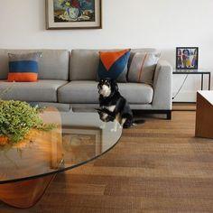 Sofá cinza: 85 ideias de como usar esse móvel versátil na decoração Living Room Sofa Design, Rugs In Living Room, Living Room Designs, Living Room Decor, Kitchen Cabinets Decor, Cabinet Decor, Yellow Sofa, Cozy Sofa, Colorful Pillows