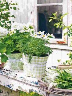 Τα λουλούδια είναι το αγαπημένο δώρο κάθε γυναίκας. Μας αρέσει να τα τοποθετούμε σε σημεία που τα βλέπουν όλοι, αλλά όταν μαραίνονται στεναχωριόμαστε. Τα ποτίζουμε πολύ, τα ποτίζουμε λίγο, τα βάζουμε στον ήλιο, τα βγάζουμε! Τι να κάνουμε λοιπόν, για να αντέξουν περισσότερε μέρες
