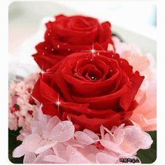 Decent Image Scraps: Beautiful Roses 3
