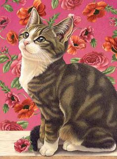 Looks alot like my cat Lilly *** LOOK HOW PRETTY THIS IS! ***