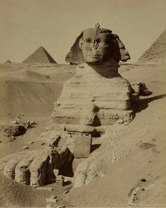 Travel, Atlases, Maps Natural History - View Auction details, bid, buy and collect the various artworks at Sothebys Art Auction House. Sphinx Egypt, Street Gallery, Pyramids Of Giza, Mystery Of History, Egyptian Art, Black And White Pictures, Ancient Civilizations, Vintage Pictures, Ancient Egypt