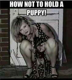 How NOT to hold a puppy...