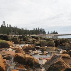 There's a certain rough-hewn romance to the prospect of life on a Maine island — the natural beauty, the close-knit communities, the relaxed pace of life that comes from isolation. When I first moved to Maine, my wife and I heard of a certain island community offering subsidized housing and other perks to young couples that fit our demographic profile and were briefly tempted by the idea of island life.