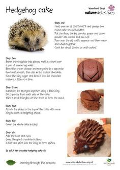 Hedgehog cake - Easy to make with wacky cake recipe. I used a star icing tip to make the spines in chocolate icing, and mixed a bit of vanilla icing into some of the choc icing to make a lighter face. Hedgehog cake - Easy to make with wacky c Fondant Cakes, Cupcake Cakes, Cupcakes, Wacky Cake Recipe, Icing Recipe, Hedgehog Cake, Hedgehog Food, Hedgehog Birthday, Vanilla Icing