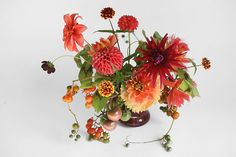my style!! tomatoes and dahlias...this is what my wedding will be like... by Amy Merrick, via Flickr