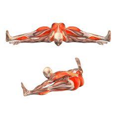 Wide-angle seated forward bend - Upavishtha Konasana advanced - Yoga Poses   YOGA.com