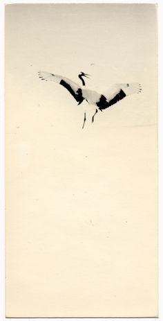 1168 - Nakazora series (c) Masao Yamamoto