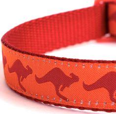 Kangaroo Dog Collar Australia Theme Pet Collar by daydogdesigns