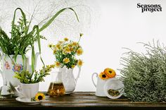 Seasons of life №4 / July-August 2011 issue #seasonsproject #seasons #floristics #flowers
