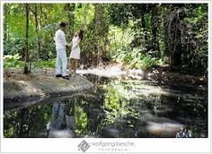Resultado de imagem para ensaio pré casamento jardim botanico