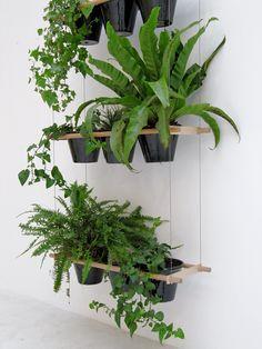 Plant suspension Etcetera by Compagnie | design Vincent Vandenbrouck