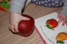 http://zmianaperspektywy.pl/dziecko-na-warsztat-odslona-druga-poszukiwania-polskich-jablek/