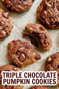 The combo of pumpkin and triple the chocolate in these thick, chewy cookies is out of this world delicious! If you loe pumpkin and chocolate, you're going to love these Triple Chocolate Pumpkin Cookies. #chocolatepumpkincookies #pumpkincookies Pumpkin Cookie Recipe, Pumpkin Cookies, Pumpkin Dessert, Pumpkin Recipes, Healthy No Bake Cookies, Healthy Cookie Recipes, Sweets Recipes, Homemade Chocolate, Chocolate Recipes