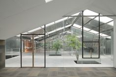 """Architecture firm, O-office has converted an old abandoned """"plant house"""" in Guangzhou, China into a lovely office space with an open floorplan enclosed with gorgeous glass panels. Office Plants, Garden Office, Guangzhou, Warehouse Renovation, Zen House, Warehouse Design, Glass Office, Concrete Stairs, Chinese Architecture"""