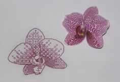 Orchids, Ajisai Press #blackwork pattern (detail) stitched by Ludmilka, using purple thread