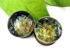 "000g,7/16"",1/2,14mm,5/8"",3/4"" or 20mm FIREWORKS Ear Plugs Gauges for Stretched Ears 100% Hard Glass. $34.00, via Etsy."