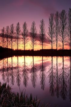 England purple sunset landscape, lake, reflection, trees iPhone Wallpaper | 640x960 iPhone 4 (4S) wallpaper download | iWALL365.com