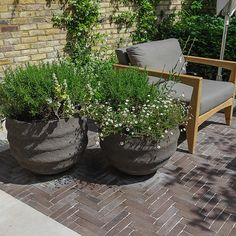 Courtyard Garden Design with an elegant walled space with Yorkstone work Fulham by The Garden Builders