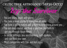 Celtic Tree Astrology - Ivy: the Survivor - September 30 to October 27 Celtic Zodiac Signs, Celtic Astrology, Astrology Zodiac, Astrology Meaning, Libra Scorpio Cusp, Norse Symbols, Mayan Symbols, Egyptian Symbols, Ancient Symbols