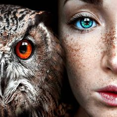 Claire Luxton Her Amazing Portraiture Fantasy Photography, Eye Photography, Animal Photography, Inspiring Photography, Pretty Eyes, Beautiful Eyes, Image Avion, Foto Fantasy, The Pussycat