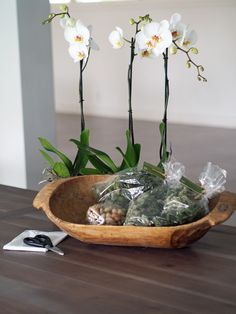 Potted Orchid In A Wooden Dough Bowl