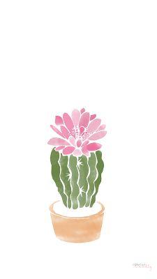 west elm cactus에 대한 이미지 검색결과