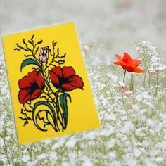 Tableware, Painting, Greeting Cards, Noel, Dinnerware, Dishes, Painting Art, Paintings, Painted Canvas