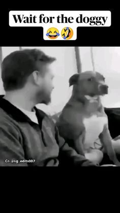 Funny Animal Jokes, Some Funny Jokes, Funny Animal Videos, Funny Relatable Memes, Funny Dogs, Funny Animals, Top Funny Videos, Crazy Funny Videos, Super Funny Videos