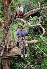 I would love to zip line in the Peru Amazon. We did at the Tahuayo River Lodge Jan 2015,