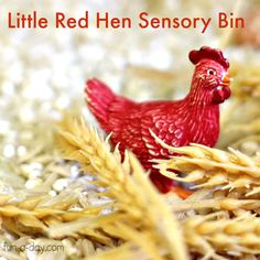 Children using sensory materials to explore the story of The Little Red Hen with barley and brown rice, plastic animals and plastic wheat.