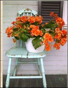 ♥ pretty garden chair
