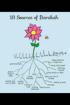 18 sources of blessings in Islam