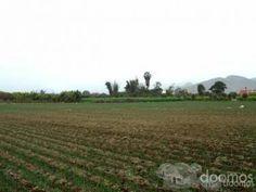 se venden 7 hectáreas en Lurín-m2 a 180 dólares zonificación ZTE (ZONA DE TRATAMIENTO ESPECIAL)