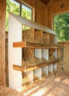 Nesting Box and the chicken coop and run they build is amazing!!!!