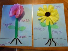 http://www.momto2poshlildivas.com/2011/05/abc-fun-f-is-for-flower ...