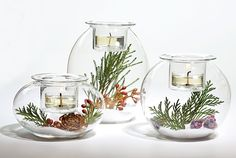 PartyLite Magazine, another online option they placed a succulent in a little water in each. Perfect for my zen temple style decor.