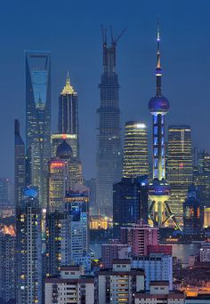 The Shanghai skyline Places Around The World, Around The Worlds, Shanghai Tower, Shanghai City, Beijing, Places To Travel, Places To Go, Shanghai Skyline, Night City