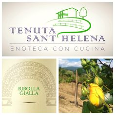Next #Sunday come to #TenutaSantHelena (Località Sant'Elena, 14 - #Vencò di #Dolegna del #Collio) to #enjoy #CantineAperte #special #dish, paired with #Fantinel #RibollaGialla  #wine #winetasting #wineoclock #winetime #winery #resaturant #italy #friuli #fvg #winelover #food #foodies #spring2016 #lifeisgood