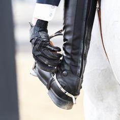 just a horse loving girl — sobasicallyhorses: Credit: @myrubymoonphoto on...