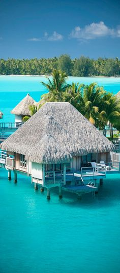 Regis Bora Bora Resort—Premium Over Water Villa (by St. Regis Hotels and Resorts) Motu Ome& BP 506 Bora Bora, 98730 French Polynesia Places Around The World, Oh The Places You'll Go, Places To Visit, Around The Worlds, Vacation Places, Dream Vacations, Places To Travel, Vacation Ideas, Honeymoon Destinations