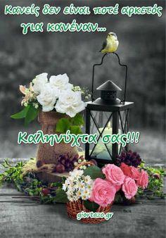 Good Morning Good Night, Plants, Men's Fashion, Moda Masculina, Mens Fashion, Man Fashion, Plant, Fashion Men, Men's Fashion Styles