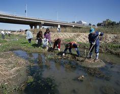한강 환경정화운동
