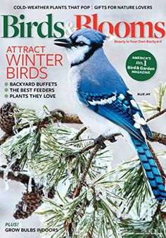 Birds and Blooms - Birds & Blooms is North America's #1 bird and garden magazine, celebrating the beauty in your own backyard. Each issue features vivid photographs, useful tips and expert advice to inform, inspire and connect enthusiasts who share a passion for backyard birds and gardening.