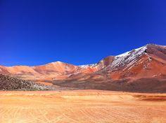 Suriplaza, Putre, Chile