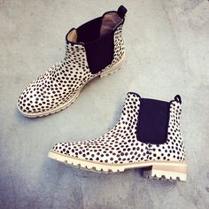 Maruti Paradise boots dots - coming February 2015!